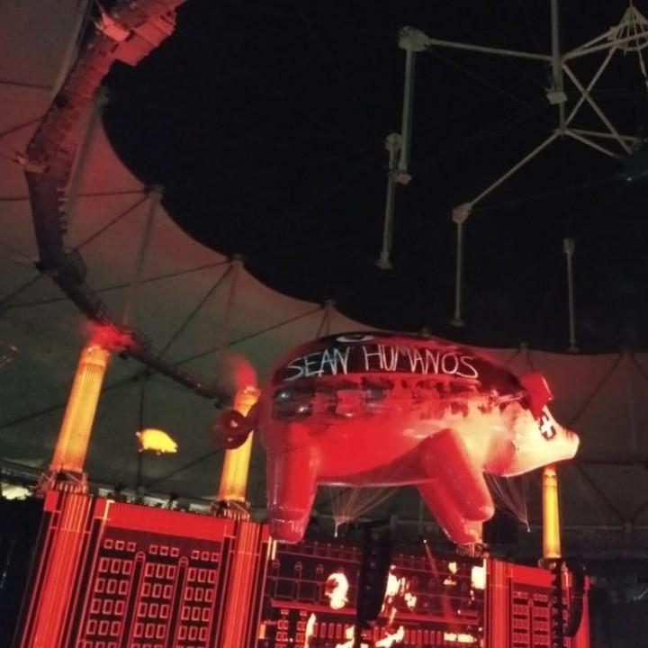 Roger Waters volvió a la Argentina
